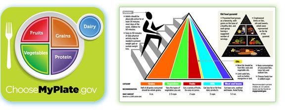 Food pyramid, Choose My Plate, US Department of Agriculture nutrition updates, healthy eating initiatives