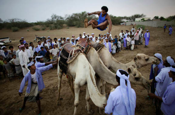 Camel-jumping, traditions in Yemen, cultural celebrations, humor,